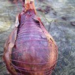 bound-onion-2010
